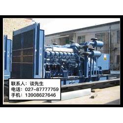 进口发电机租赁,武汉华丰源动力,武湖进口发电机图片
