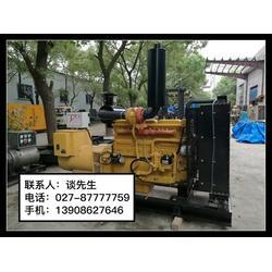 进口发电机出租-武汉亿源丰动力设备-沙市进口发电机图片