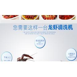 龙虾清洗机多少钱-浙江龙虾清洗机-迈康机电(查看)图片