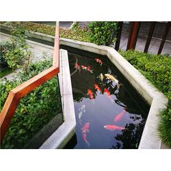 淮安鱼池过滤系统-鱼池过滤系统清洗-杭州华池园林(优质商家)图片