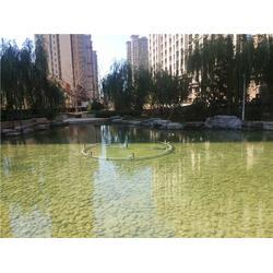 魚池凈水設備-庭院魚池凈水設備-杭州華池園林(優質商家)