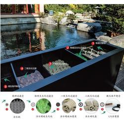 家庭鱼池过滤器,嘉兴鱼池过滤器,山树景观活水集成过滤器图片