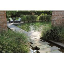 杭州华池园林 景观水法-景观水图片