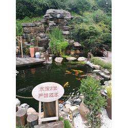 鱼池水净化过滤设备,杭州华池园林,安庆鱼池水净化图片