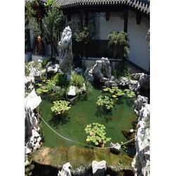 锦鲤鱼池过滤系统-杭州华池园林-上海鱼池过滤