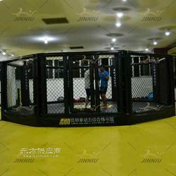 搏击俱乐部金牛格斗笼品牌生产质量优越GDL-JN-01图片