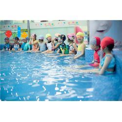 亲子游泳俱乐部学费-义乌哈喽贝比