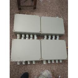 BXJ51-40/20防爆分线箱图片
