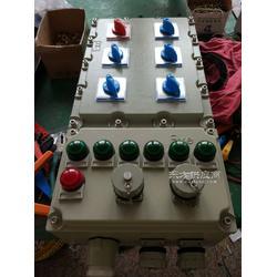 BXS-8/K200防爆动力配电箱图片