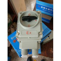 BZZ51-10A/3防爆转换开关图片