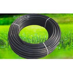 园林树苗灌溉滴灌设备灌溉工具树苗浇水滴灌PE管图片
