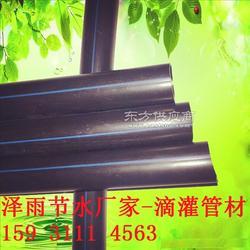 徐文县滴灌管材农业灌溉用管泽雨滴灌节水设备图片