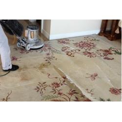 办公室地毯清洗(多图),观音桥办公室单次保洁图片
