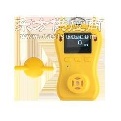 【C2H4O2便携式检测仪】【C2H4O2壁挂式检测仪】图片