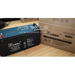 宝迪蓄电池6-GFM-7 12V7AH/20HR太阳能专用蓄电池图片