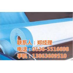 pvc防水卷材出售-庆阳pvc防水卷材-潍坊正源防水材料图片