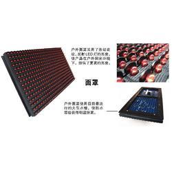 全彩LED显示屏|金巨电子(优质商家)图片