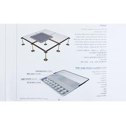 南京防静电地板 防静电地板生产厂商 耐斯地板南京(优质商家)图片