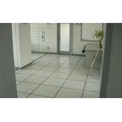 南京pvc抗静电地板_耐斯地板南京_南京pvc抗静电地板公司图片