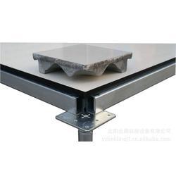 合肥抗静电地板、抗静电地板厂家直销、南京耐斯(推荐商家)图片
