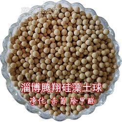 腾翔硅藻土球消除甲醛释放负离子 保持室内空气清新图片