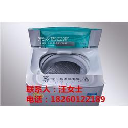 海丫XQB60-918投币洗衣机 商用自助洗衣机图片