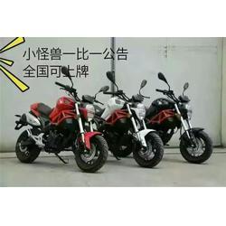 摩托车厂家,哈里威认证企业,蔡甸区摩托车图片