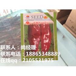 大红辣椒种子,英潮红系列,玉溪辣椒种子图片