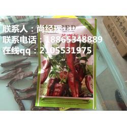 农瑞丰(图)_益都红辣椒种子_海南辣椒种子图片