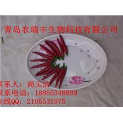 辣椒种子_周口辣椒种子_农瑞丰(查看)图片
