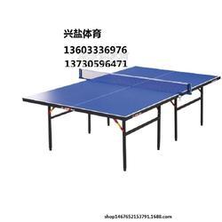 乒乓球台专业生产厂家市场庞大图片