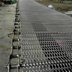 食品专用眼睛网带、上海眼睛网带、德州悦达链网厂家(图)图片