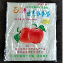生产苹果套袋厂家、苹果套袋、常兴果袋图片