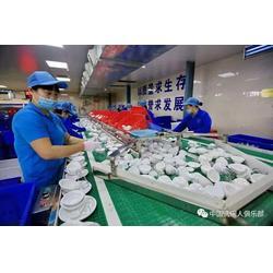 大型餐具清洗设备操作_洗碗机8年品牌_大型餐具清洗设备图片