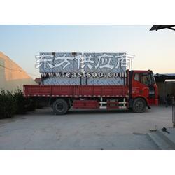 绿驰商用大型豆芽机,新型有机豆芽机图片