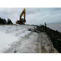 石笼网|安平丰海(在线咨询)|铅丝石笼网图片
