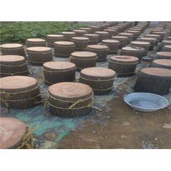 巴彦淖尔仿木树桩|泰安压哲仿木栏杆(在线咨询)|订做仿木树桩图片