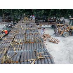 仿木树桩模具、长沙仿木树桩、泰安压哲仿木栏杆图片