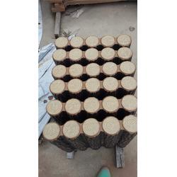 泰安压哲仿木栏杆,安庆仿木树桩,订做仿木树桩图片