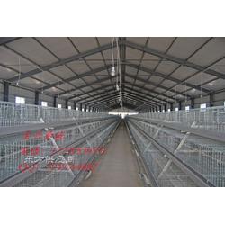 厂家直销阶梯式冷镀锌笼网优质鸡笼图片