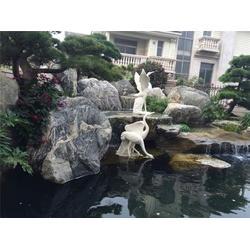 花园鱼池设计建造|金碧林(在线咨询)|从化花园鱼池图片