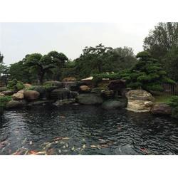 花园鱼池建造报价,花园鱼池,金碧林(查看)图片