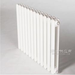 钢二柱5025型暖气片图片