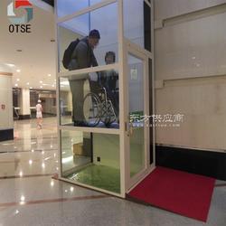 OTSE 专业厂家优质螺杆电梯 自带观光井道适用复式楼与阁楼家用别墅电梯图片