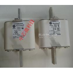 170M3715原装美国巴斯曼快速熔断器各种型号 现货供应图片
