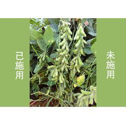 化肥增效剂,天丰农业,化肥增效剂功能图片
