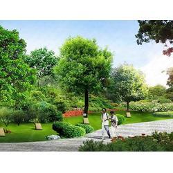 昭通园林景观效果图,龙居雕塑,昭通园林景观图片