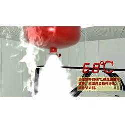 泡沫灭火器厂家,联捷消防(在线咨询),广东泡沫灭火器