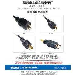 温州电源线_插头电源线_立腾电子(优质商家)图片