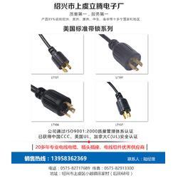 插头电源线,立腾电子,义乌电源线图片